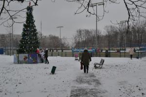 В МО Бирюлево Западное установили праздничную ель